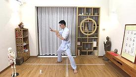 Chen Style TaiChi 18 Forms - 2