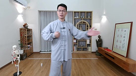 Chen Style TaiChi 42 Forms - Part 3
