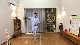 Chen Style TaiChi 18 Forms - 5