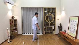 Chen Style TaiChi 18 Forms - 6