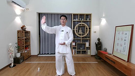 Chen Style TaiChi 18 Forms - 13th(1)
