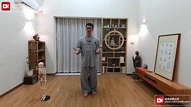 Chen Style TaiChi 18 Forms - 11th