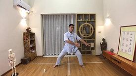 Chen Style TaiChi 18 Forms - 4