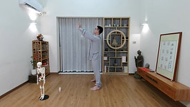 Chen Style TaiChi 42 Forms - Part 1