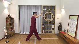 Yang Style TaiChi 24 Forms - Part 13