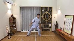 Chen Style TaiChi 18 Forms - 3
