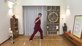 Yang Style TaiChi 24 Forms - part 4