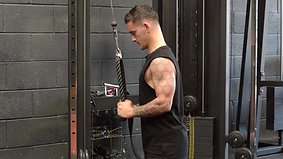 Tricep Exercise Variations using Cable Machine