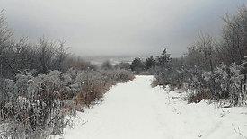 Bankov winter 2019