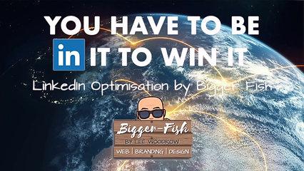 LinkedIn Optimisation Advert