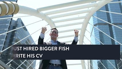 CV Writing Advert