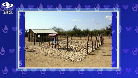Winner Wayuu