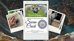Swan Creek Promo Video