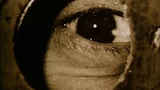 Evde Sessiz Bir hafta (1969) Jan Svankmajer