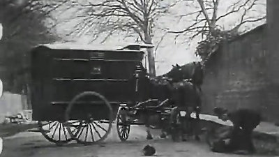 A Daring Daylight Burglary (1903)
