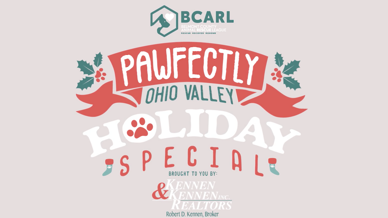 BCARL Pawfectly Holiday Special - 2020