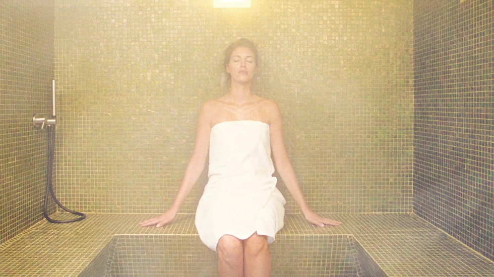 Wellness Touch + Steam Generator