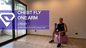 Chest fly one arm
