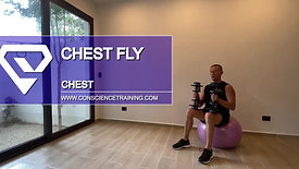 Chest fly