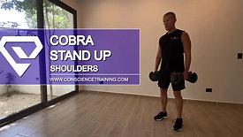 Cobra Stand up