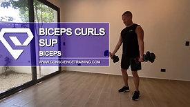 Biceps curls Sup