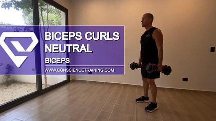 Biceps curls Neutral