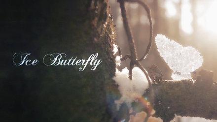 Ice Butterfly + Breakdown