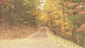 Autumn Escape Volume One