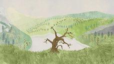 teaser O stromu / About a Tree