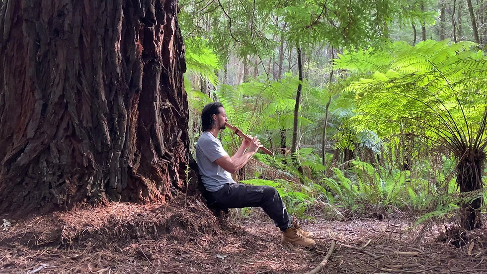 Forest flute