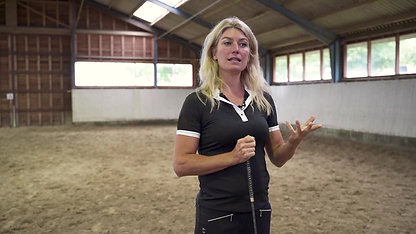When Horses Choose - the method with Mia Lykke Nielsen