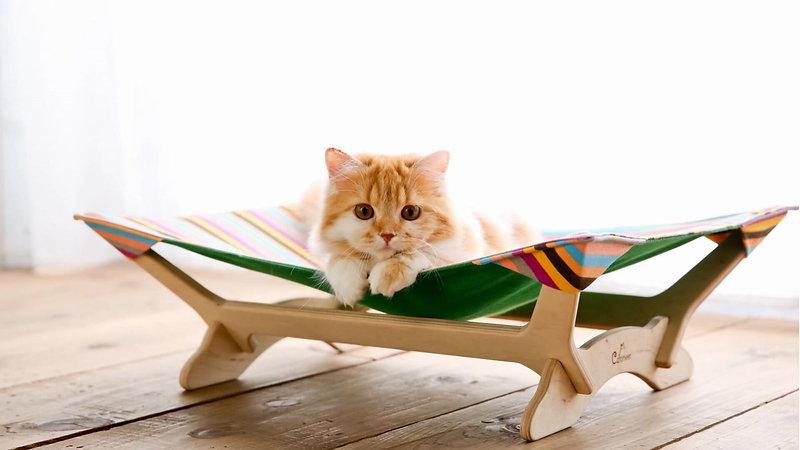 Catoneer 一生モノの猫ハンモック