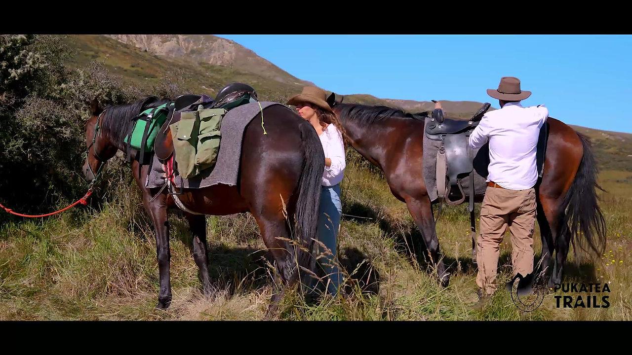 Pukatea Horse Trails & Adventures