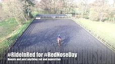 Red Nose Day Dressage