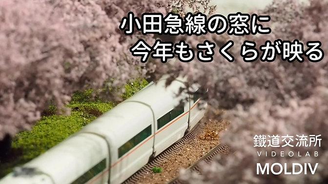 桜と小田急