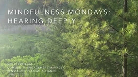 Mindfulness Mondays: Hearing Deeply
