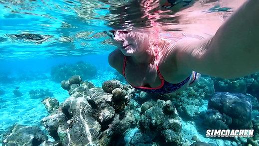 Open Water Maldiverna  Simcoachen