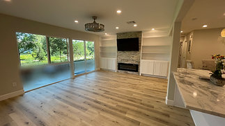 Full Remodeling Project