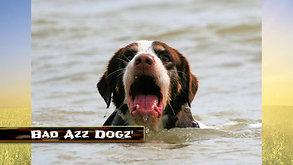 Bad Azz Dogz 2019