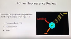 AquaFlash: What is Active Fluorescence