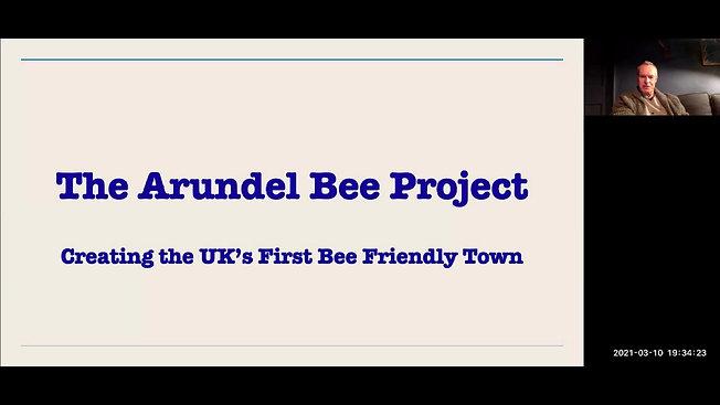 Arundel Bee Project - Nick Field