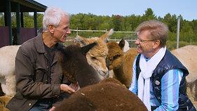 EN PRIMEUR, un reportage signé Kosta Impact Animal