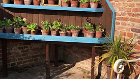 Fruit Cage and Auricula Theatre