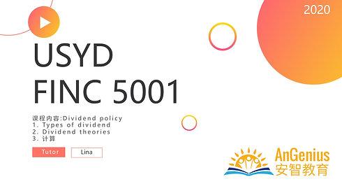 FINC5001 Dividend Policy-期末复习