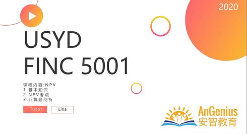 FINC5001 NPV-期末复习