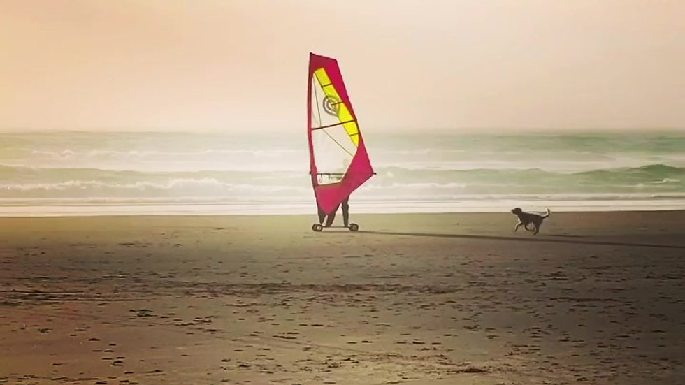 goya-lucy-windskate