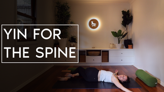 Yin for the Spine