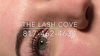 Soft Volume Lashes