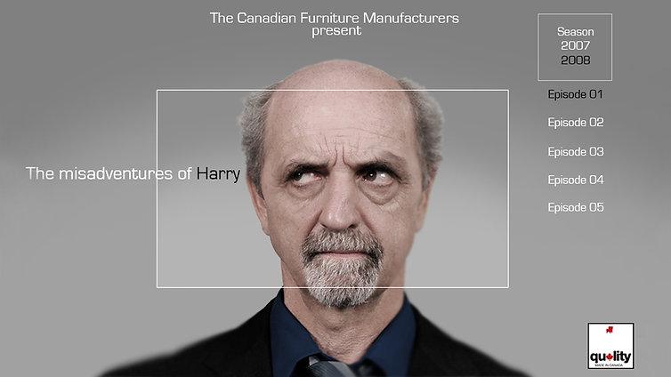 THE MISADVENTURES OF HARRY