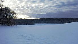 Wintery Morning